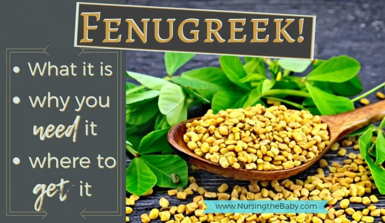 Fenugreek for Breastfeeding! The what, why & how