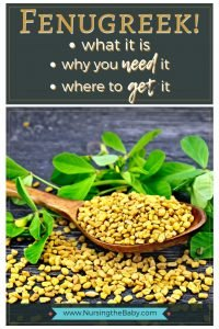 Fenugreek! What it is and why you need it
